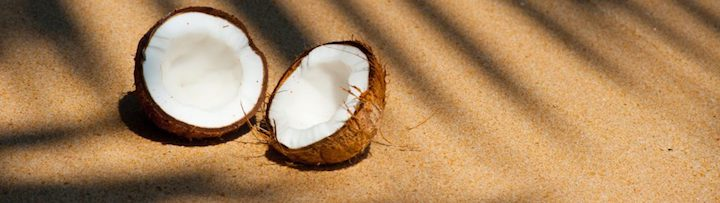 exfoliant naturel cosmetique gommage noix de coco