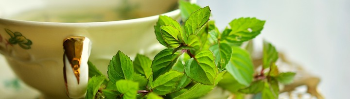 Les plantes permettent d'améliorer la digestion