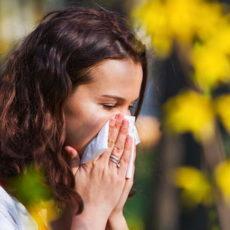 Le printemps est, pour les personnes allergiques, une mauvaise saison, qui s'accompagne de rhinite allergique, conjonctivite et autres maux liés à l'allergie au pollen.