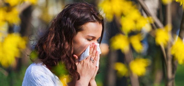Allergie au pollen et rhume des foins : les traitements naturels