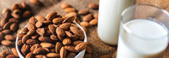 Quelles sont les sources de protéines dans notre alimentation ?